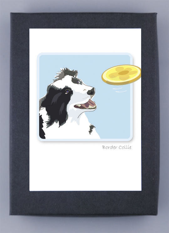 Border Collie Boxed Note Cards