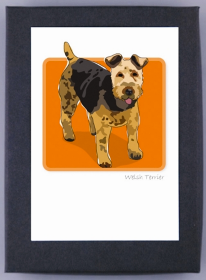 Paper Russells Boxed Note Cards Welsh Terrier