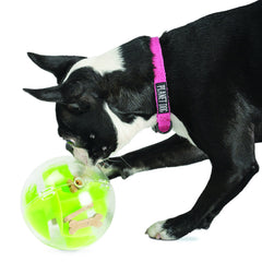 planet dog orbee-tuff mazee treat ball pink