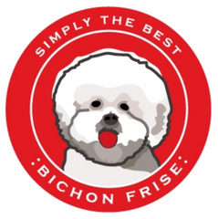 Simply the Best Car Magnet Bichon Frise