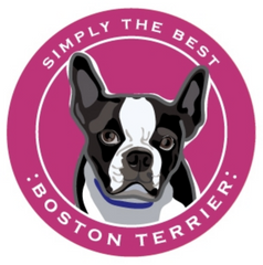 Simply the Best Car Magnet Boston Terrier