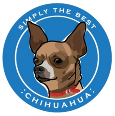 Simply the Best Car Magnet Chihuahua