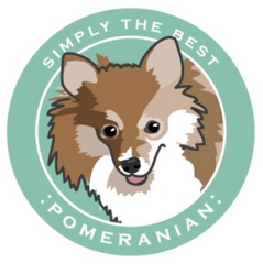 Simply the Best Car Magnet Pomeranian