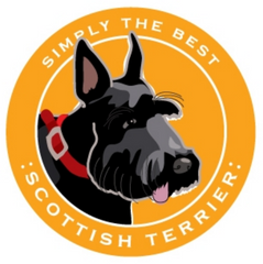 Simply the Best Car Magnet Scottish Terrier
