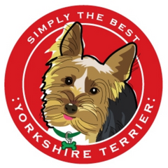 Simply the Best Car Magnet Yorkshire Terrier