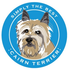 Simply the Best Car Magnet Cairn Terrier