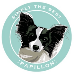 Simply the Best Car Magnet Papillon