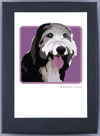 Paper Russells Boxed Note Cards - Bearded Collie