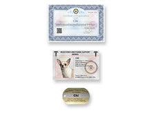Load image into Gallery viewer, Bronze Identification Kit - 100% made in the USA