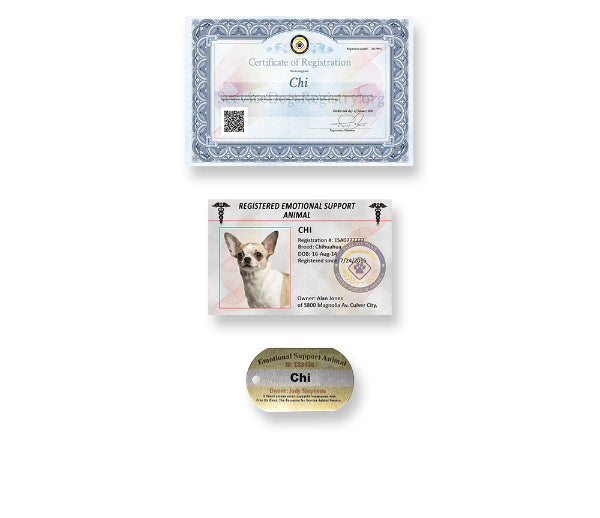 Bronze Identification Kit - 100% made in the USA
