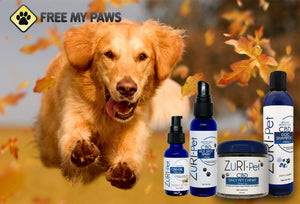 ZuRI CBD Pet Bundle