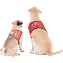 Load image into Gallery viewer, Free My Paws Finished Red Vest and Patches