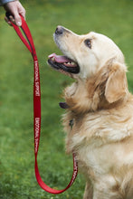 "Load image into Gallery viewer, Service or Emotional Support Dog Red Nylon Leash 5' L x 1"" W"