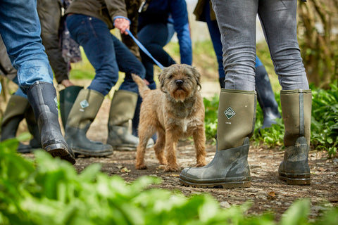 Wellington boots for dog walking