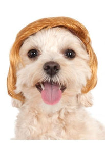 Pawlitical Billionaire Dog Wig