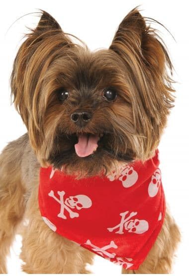 Red Skull & Crossbones Bandana