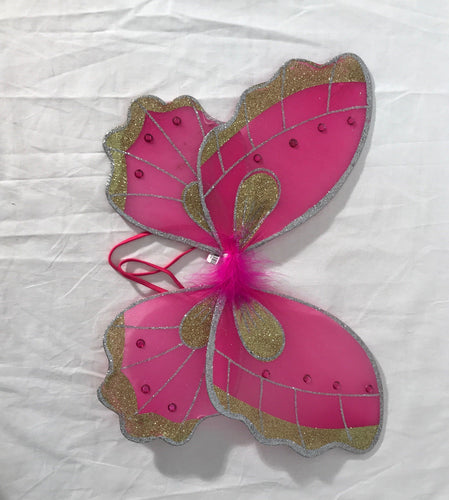 Two-Tone Butterfly Wings