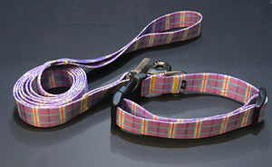 Easter Basket Argyle (Collar or Lead).