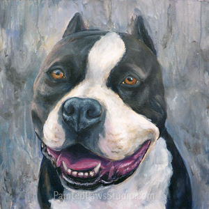 "Custom Pet Portrait 24"" x 24"" (Acrylic on Canvas) By Lillian"