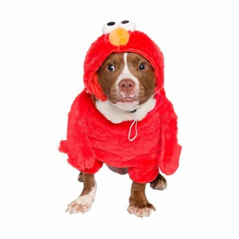 Sesame Street Elmo Dog Costume*.