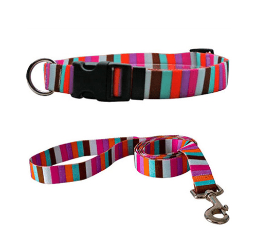 Multi-Stripe Collars and Leads.