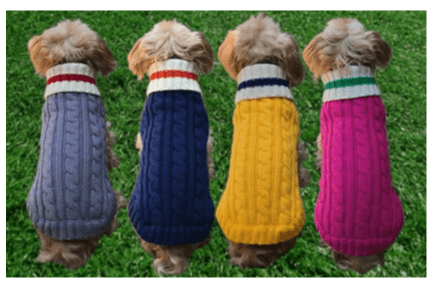 Preppy Pup Sweater Collection*.