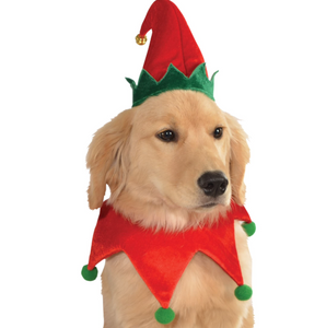 Dog Elf Hat with Bell and Collar*.