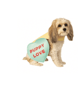 Pet Candy Heart Pet Costume*.