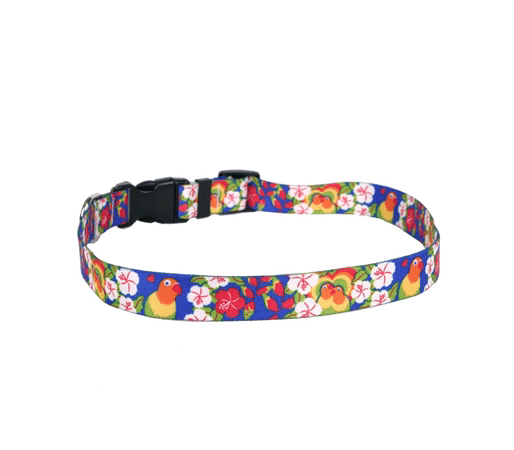 Lovebirds Cat Collar.