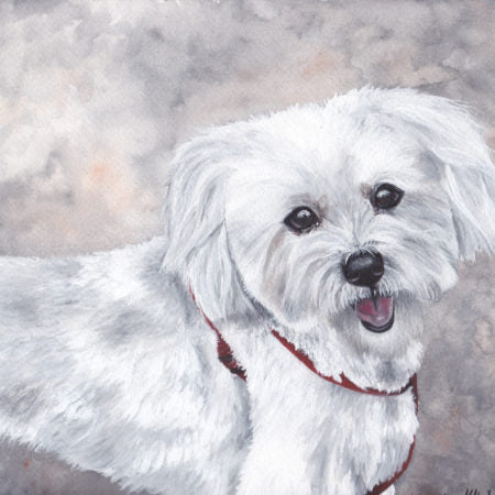 Custom Pet Portrait (Watercolor) by Katherine