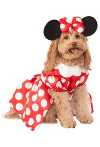 Minnie Mouse Costume*.