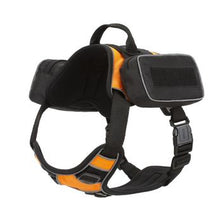 Load image into Gallery viewer, Quest Removable Utility Saddlebags + Built-In Waste Bag Dispenser.