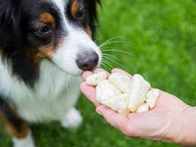 Load image into Gallery viewer, Yaky Charms Dog Popcorn Dog Treat