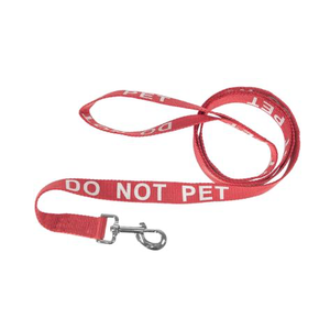Reflective Nylon Leash.