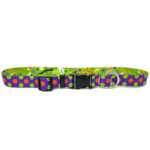 Load image into Gallery viewer, Halloween Mix Collar and Lead