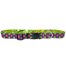 Halloween Mix Collar and Lead