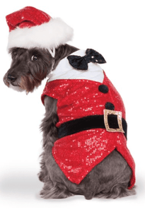 Sequin Santa Costume