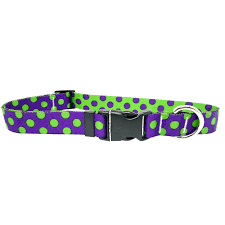 Polka Dot Collar and Lead