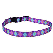 Purple Argyle Collar and Lead