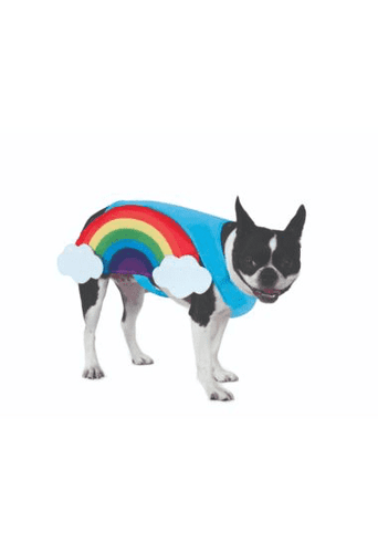 Rainbow Pet Costume.