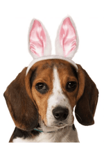 Load image into Gallery viewer, Rabbit Ears Headband