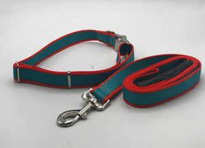 Striped Sterling Collar/Lead Collection.