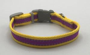 Reflective Yellow & Purple Collar