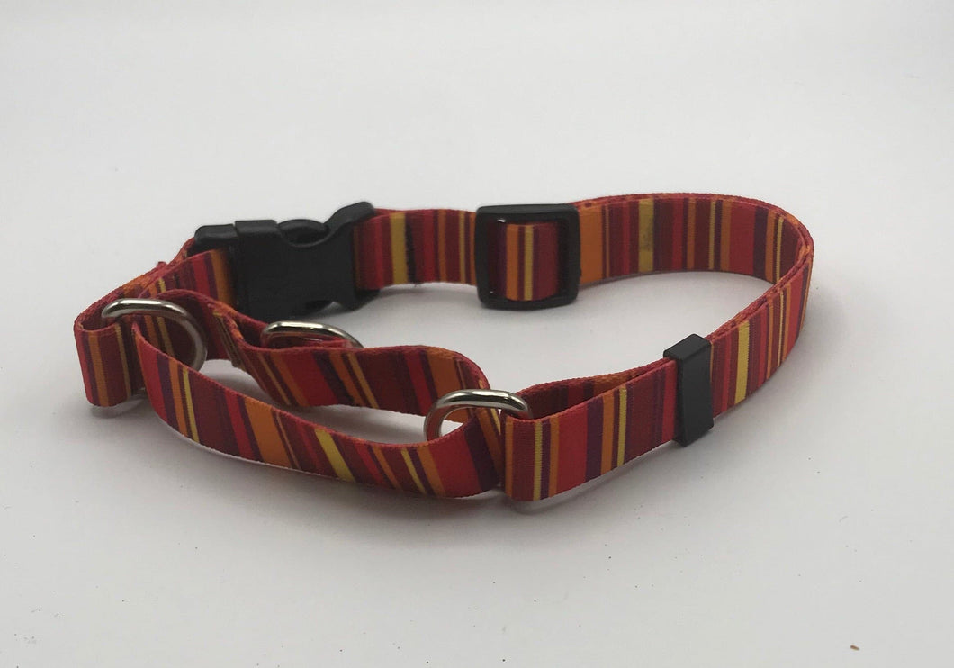 Vertical Stripe Martingale Collar Orange