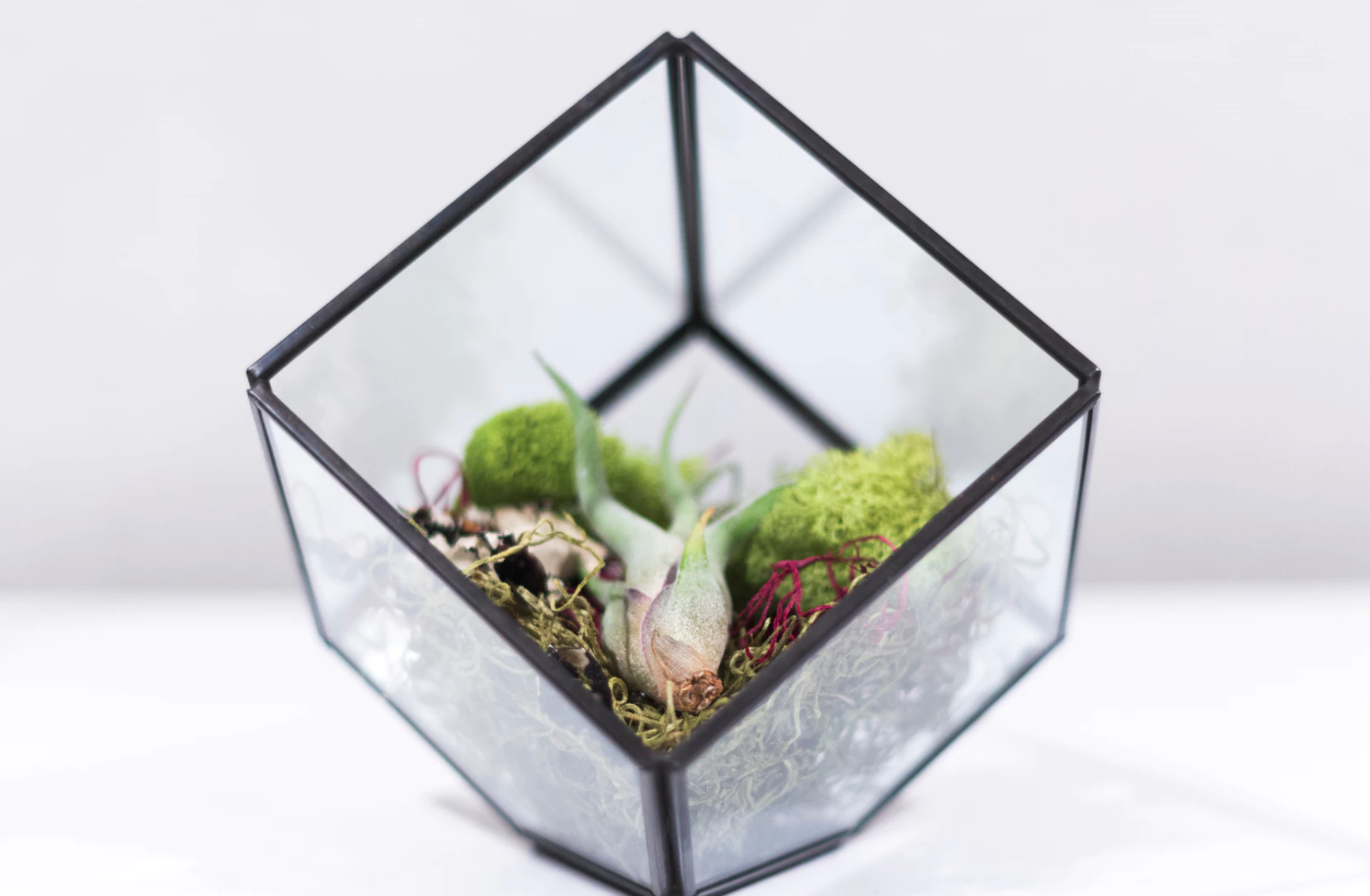 DIY Beach-Themed Glass Jar Terrarium Image
