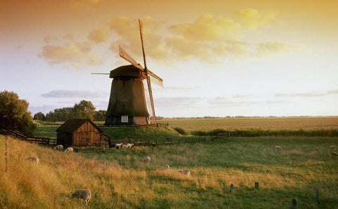 The Green Organic Dutchman windmill