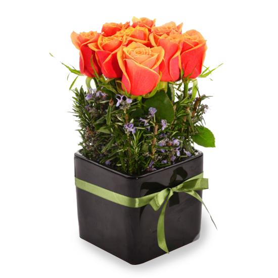 Flame Rose Pot - Tomuri & Co. Floral Designs