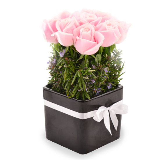 BLUSH ROSE POT - Tomuri & Co. Floral Designs