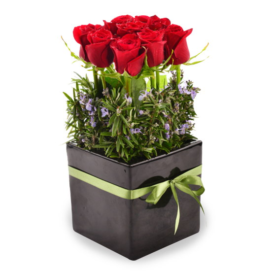 Red Rose Pot - Tomuri & Co. Floral Designs