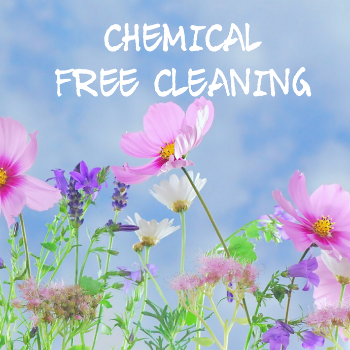 3 Natural Pet & Family Safe Cleaning Supplies for your Home.